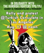 solidarty with kurdish